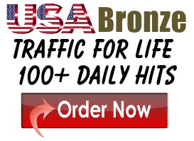 Bronze Traffic For Life